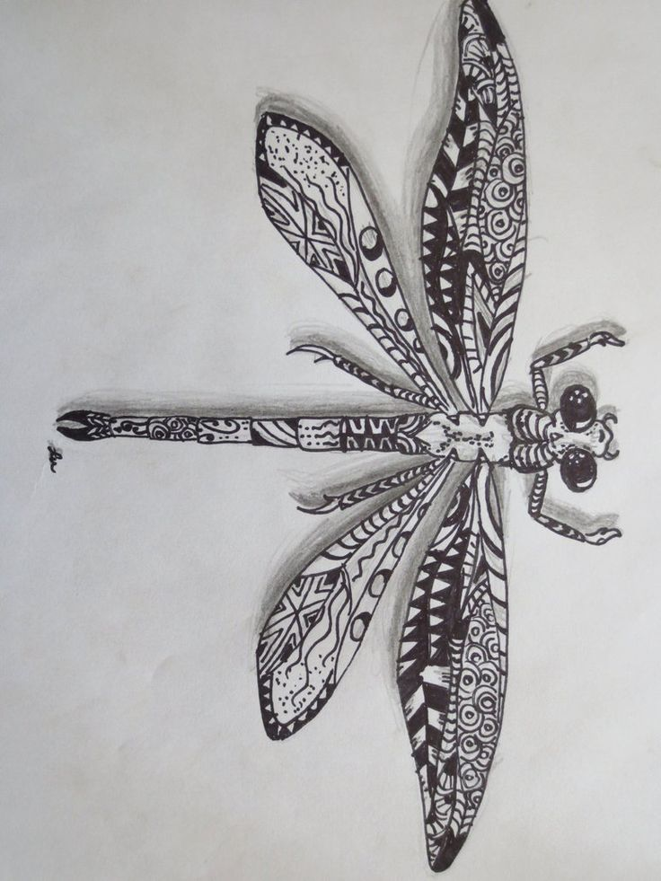Zentangle dragonfly by ~luzilla