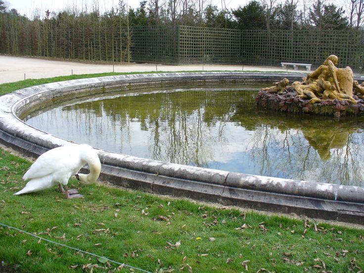 Jardins de Versailles - Rencontres
