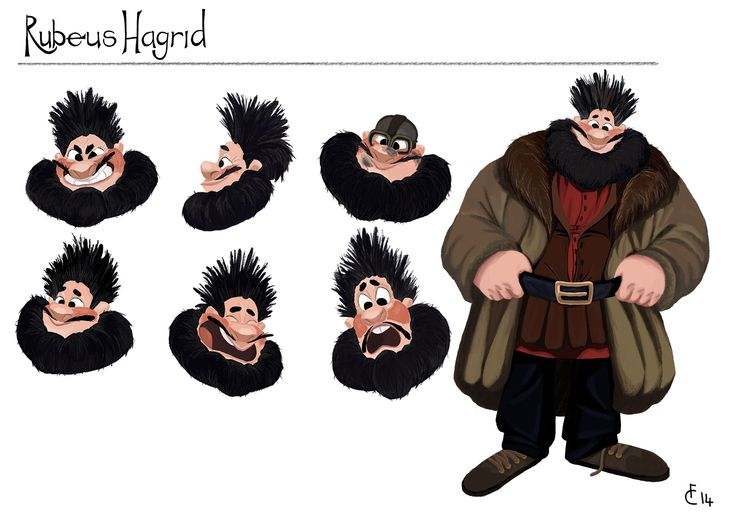 Rubeus Hagrid from Harry Potter series