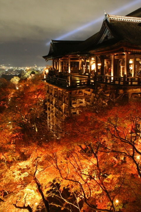 Kiyomizu Temple, Kyoto , Japan: I would have loved this view, but at nine in the morning it was still fantastic.