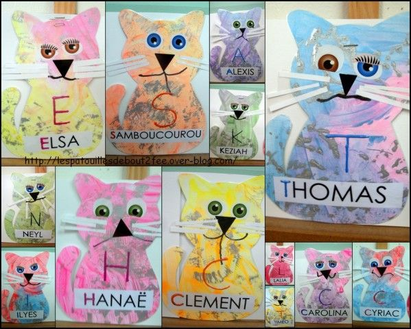 Chats maternelle