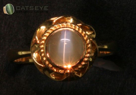 Be the center of attention by wearing this cats eye stone ring @ https://shop.catseye.org.in/
