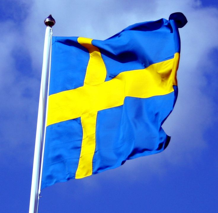 """Sweden goes Vegan - 10 procent vegetarians and vegans - A recent post by """"The Local,"""" a Swedish news publication, highlights the rising number of vegetarians in Sweden. Nearly 10 percent of the country now identifies as vegetarian or vegan, with young people leading the way.   According to a recent poll conducted by Animal Rights Sweden, in the last five years, the number of Swedish vegetarians has increased by 4 percent."""