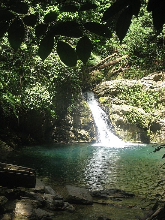 Rico Seco Waterfall in Toco Trinidad and Tobago
