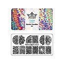 Amazon.com : PUEEN Nail Art Stamping Plate - Marble Paradise 01 - Theme Park Collection 125x65mm Unique Nailart Polish Stamping Manicure Image Plates Accessories Kit - BH000715 : Beauty