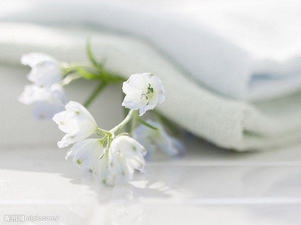 Curățare ecologică în casa   1.Soda  Indispensabil pentru curățarea suprafețelor emailate, ustensile, blaturi, gresie. Dar , linoleum sifon nu poate fi curățat. Sodă și muștar pulbere 1: 3 - feluri de mâncare bune de spălat.   2. Sodă și oțet de  sticlă de suc, o jumatate de cana de sare și o ceașcă de oțet se va curăța blocajul în conducte. Se umple, și după 30 de minute se clătește cu apă clocotită.  Pentru a curăța și dezinfecta toaleta, puteți turna într - un castron mare și se toarnă…