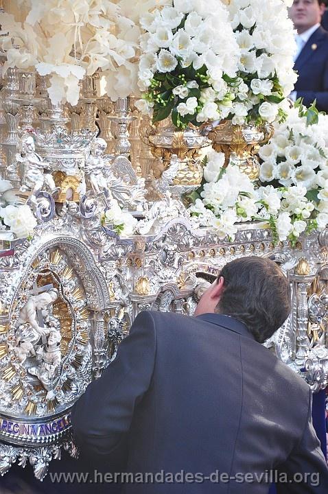 Tulipanes en la Semana Santa. Sevilla, Spain.
