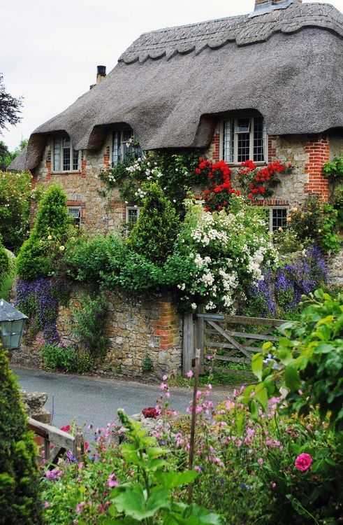 Move me in! Old stone house with thatched roof and glorious flowering garden