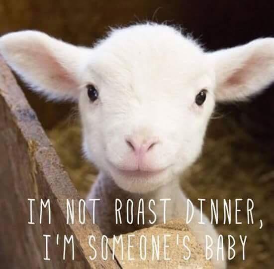 Yo no soy el asado para cenar, soy el bebé de alguien.