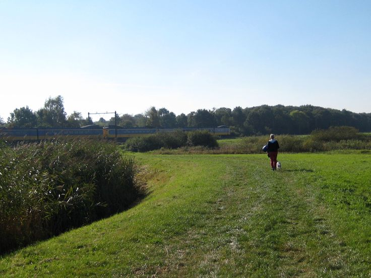 Wandelen in de oude kene bij Hoogeveen.