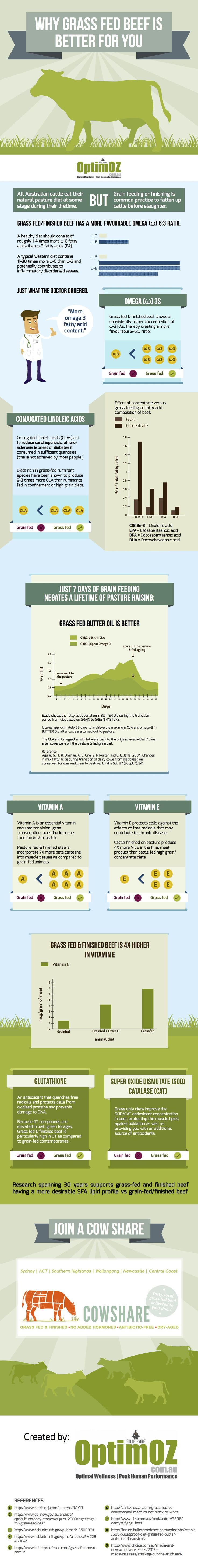 Why Grass Fed Beef is Better (Infographic)