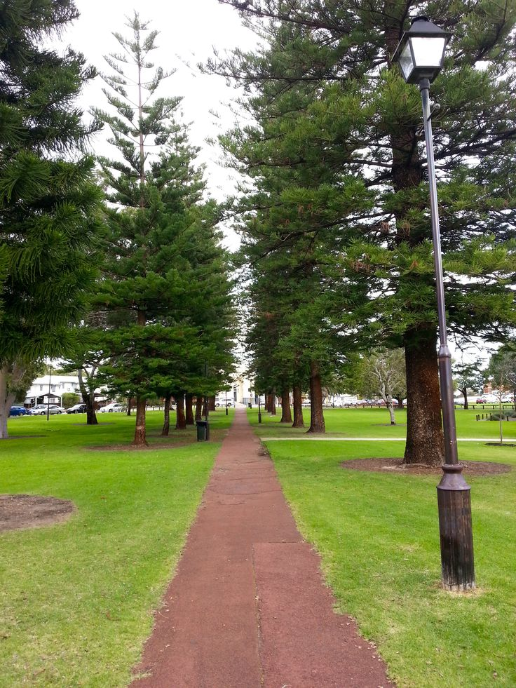 3pm – head buzzing. Take a walk to a nearby park to think things through. I wonder what would happen if…