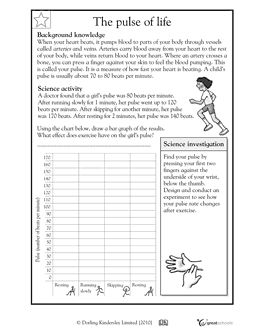 109 best images about School Teaching on Pinterest | Science ideas ...