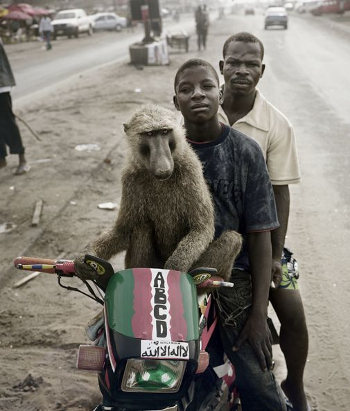 another photo for the hyenia men story.  they also have monkeys
