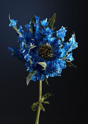 HOST - Lapis Lazuli by Alyson Mowat