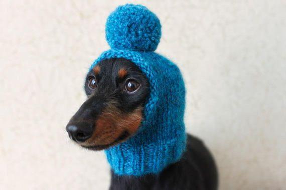 Knitting Pattern Pom Pom Dog Hat Mini Dachshund Dog Hat Small