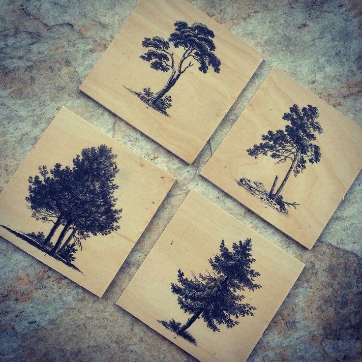 tree coasters on birch plywood
