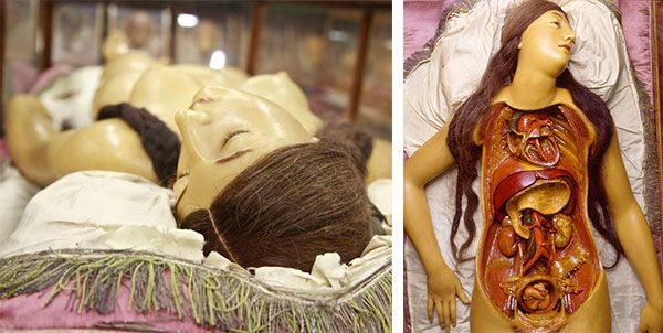 """Anatomical Venus"" wax model with real human hair, probably sculpted by Clemente Susini around 1790, at La Specola, Museo di Storia Naturale..."