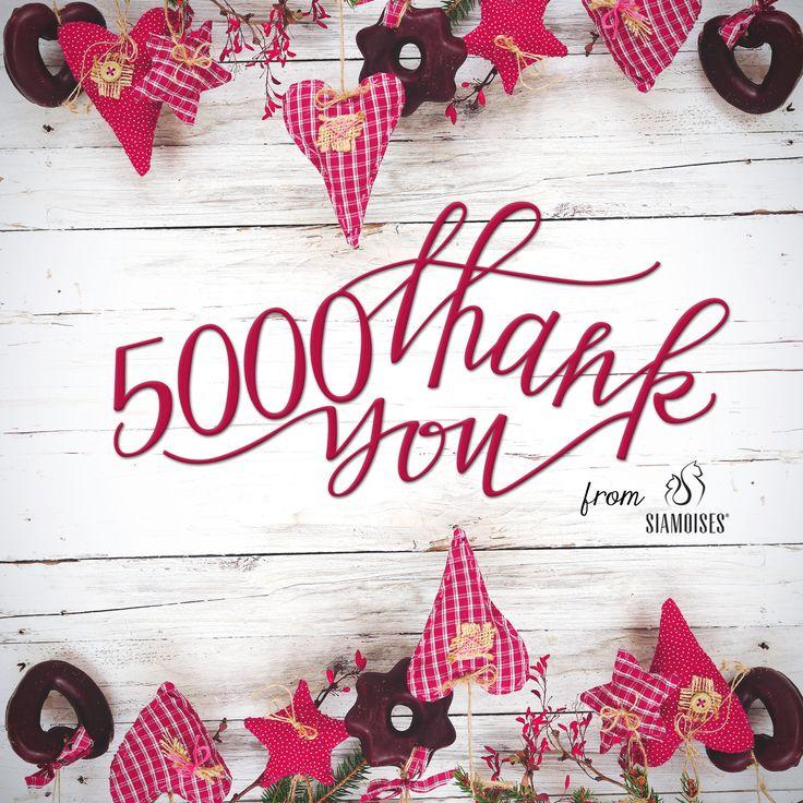 grazie ai nostri splendidi 5000 #fan #siamoises!