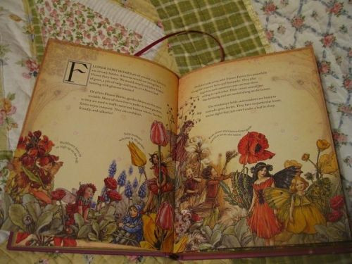 ~  Flower  Fairies_____  Cicely Mary Barker......early printing  I have a later printing in a mini set of her flower fairy art.