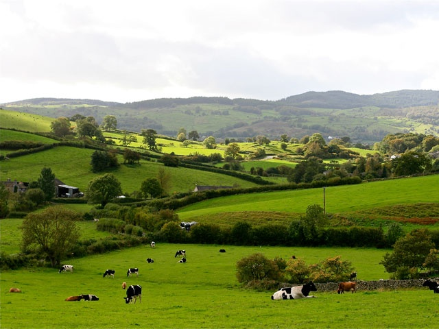 View from the House Crosthwaite House lake district accommodation lyth valley crosthwaite