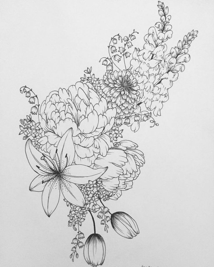 Eucalyptus Bouquet Drawing