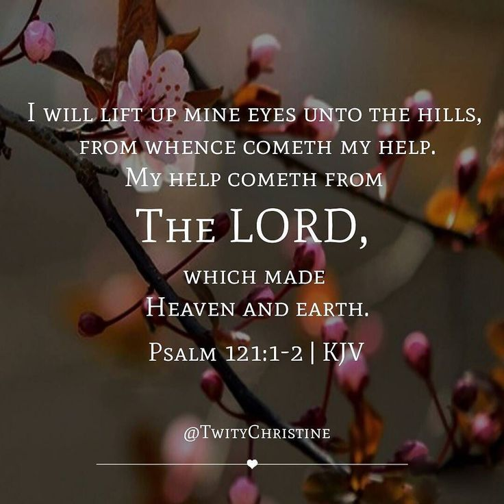 i will lift up my eyes I will lift up mine eyes unto the hills, from whence cometh my help my help  cometh from the lord, which made heaven and earth he will not suffer.