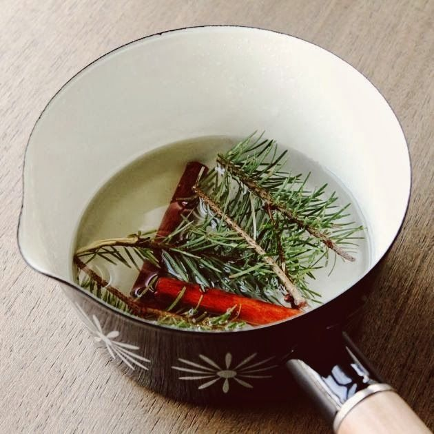 winter simmer - let the mixture of cinnamon, pine needles, and cloves simmer on your stove to make your home smell like christmas.