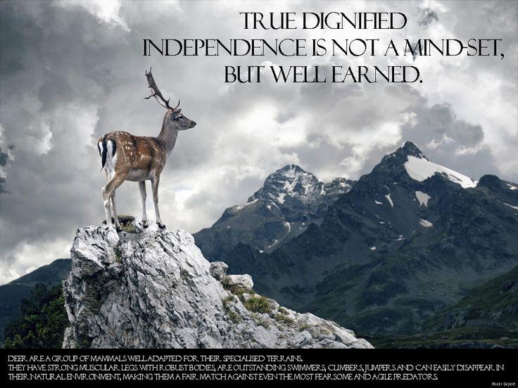 True independancy