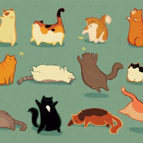 kyungsoosbumhole:  Fat cats for you day  pudgykitties.tumblr.com