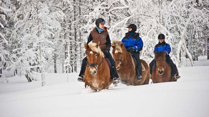 Romantic Christmas gift idea: couples winter horseback riding in the Laurentians!