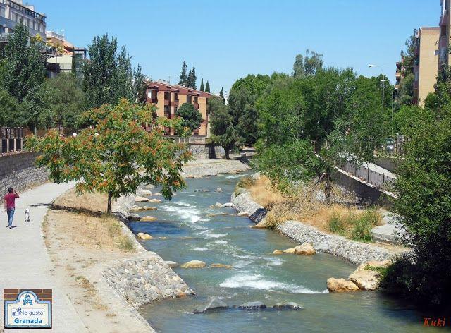 El Rio Genil