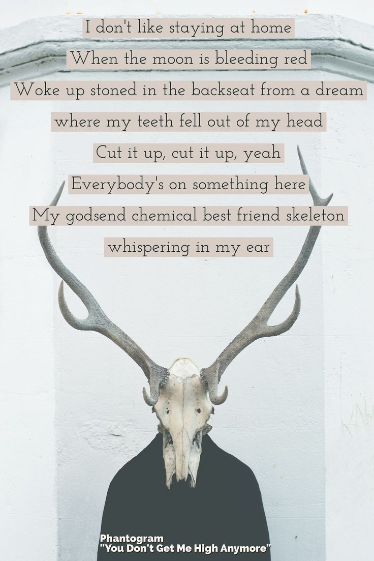 """I don't like staying at home / when the moon is bleeding red / woke up stoned in the backseat from a dream I where my teeth fell out of my head / Cut it up, cut it up, yeah / everybody's on something here / my godsend chemical best friend skeleton whispering in my ear — Phantogram """"You Don't Get Me High Anymore"""" lyrics  