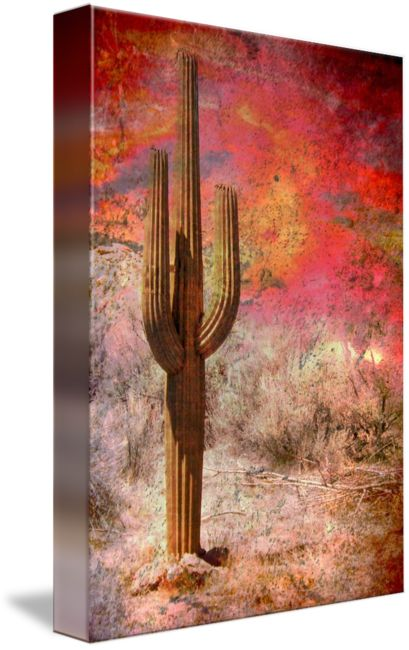 """Desert+Fire""+by+Cynthia+Burkhardt,+United+States+//+Contemporary+abstract+image+of+a+desert+saguaro+cactus+with+vivid+southwestern+colors+in+back+and+foreground.+//+Imagekind.com+--+Buy+stunning+fine+art+prints,+framed+prints+and+canvas+prints+directly+from+independent+working+artists+and+photographers."