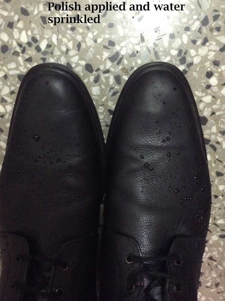 Techno Kachori: how to polish shoes?