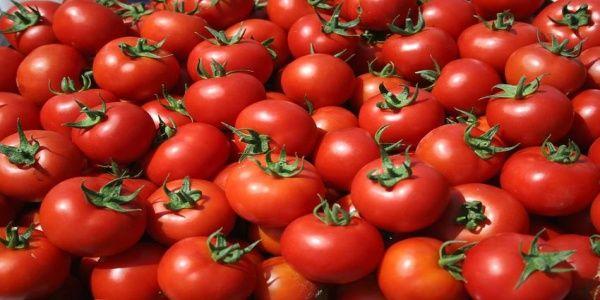 Ανακαλύφθηκε το κλειδί για να ξαναγίνουν οι ντομάτες νόστιμες