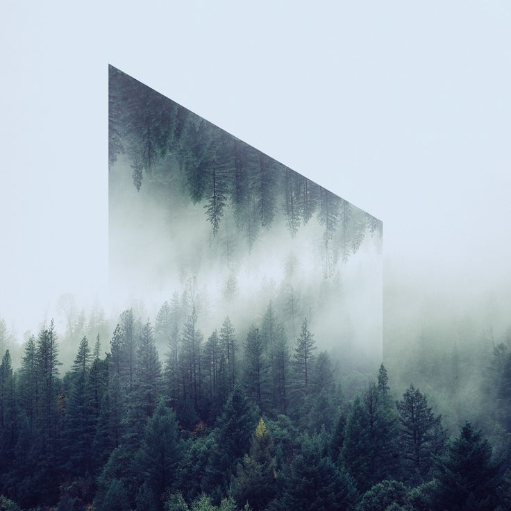 Victoria Siemer Reflected Landscapes and Creative Photo Manipulations