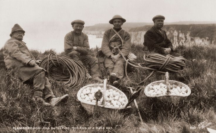 Egg gatherers, Flamborough, East Yorkshire July 1926.  Picturing England: photographs of English life