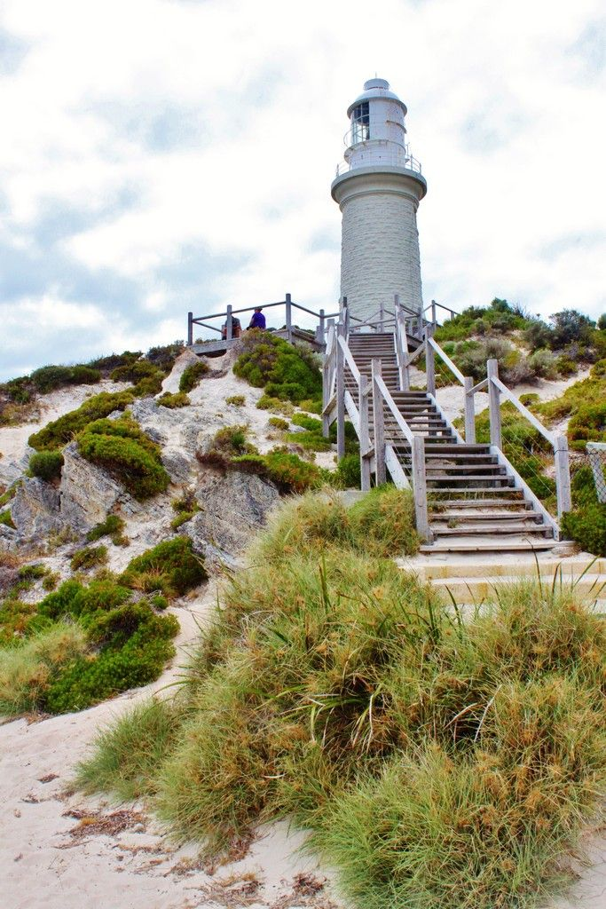 Travel bucket list for Australia - Rottnest Island: http://www.ytravelblog.com/rottnest-island-photo-essay/
