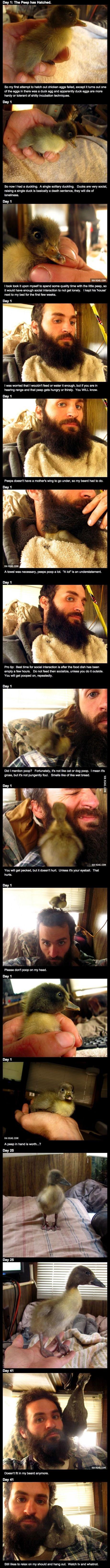 A man, His beard, And a ducky