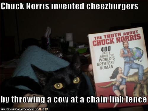 I love chuck norris....the drink, the actor. These facts are totally true, ya know.