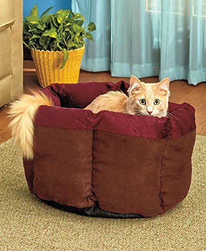 Soft Plush Cat Cuddle Bed BurgundyChocolate by GetSet2Save *** To view further for this item, visit the image link.