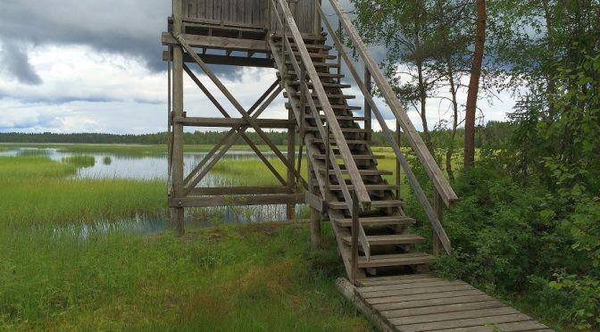 Mulkkujärven lintutorni, Alavus.