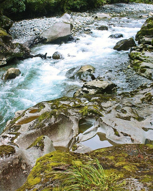 Flow #creek #water #rocks #naturephotography #keepitwild #theoutbound #hiking #hikingadventures #scenery #landscape #nature #adventure #wanderlust #worldcaptures #outdoors #active #adventure #nz #nzmustdo #newzealandvacations
