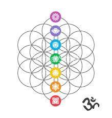 Risultati immagini per sacred geometry vector