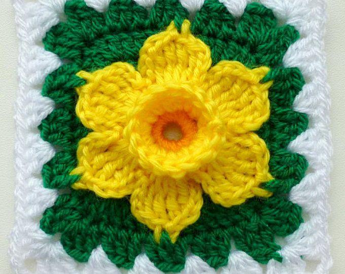 Instant Download Crochet PDF pattern  LD-0105 Filet Afghan
