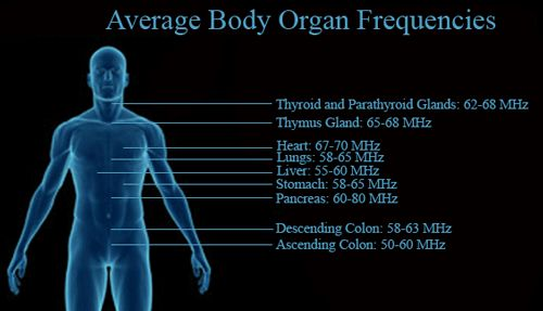 #Frequencies. Visit us at http://www.expansions.com/