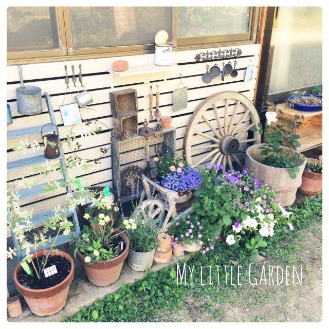 セリア/プレゼント企画計画中♥/ロハス/DIY/玄関ガーデン/鉢植え…などのインテリア実例 - 2015-06-06 05:44:00 | RoomClip(ルームクリップ)