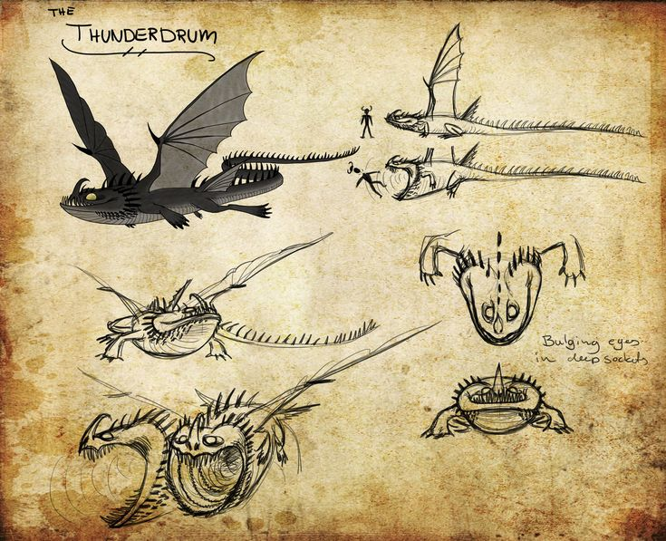 HTTYD Dragon Manual | HTTYD: Thunderdrum by ~Iceway on deviantART