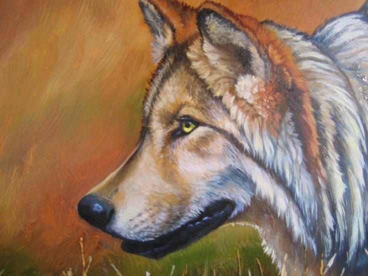 divoký,volně žijících živočichů,vlk,vlci pozadí telefonní pohotovostním tapety 1024x768